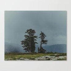 Magic Northwest Forest Canvas Print