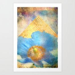 Sky Poppy Art Print
