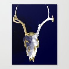 Skull Dye Canvas Print