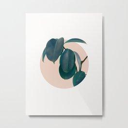 Home plant Metal Print