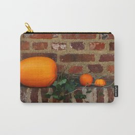 Gourds On A Windowsill Carry-All Pouch