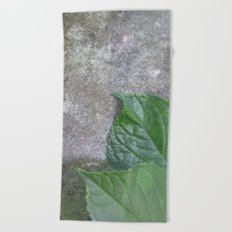 Urban Plant hydrangea leaves on concrete wall Beach Towel