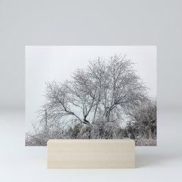 Snowy naked tree Mini Art Print