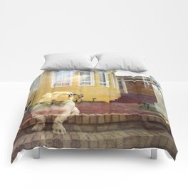 Suburban Bulldog Comforters
