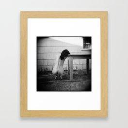 Sighin' Down the Wind So Sadly Framed Art Print