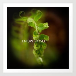 Know Thyself Art Print