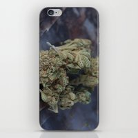 medical iPhone & iPod Skins featuring Medical Marijuana Deep Sleep by BudProducts.us