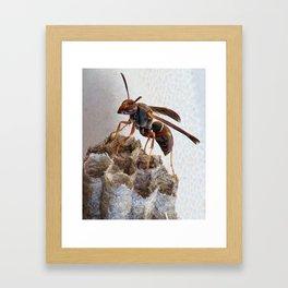 On Top of the World! Framed Art Print