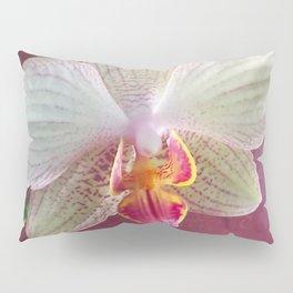 Pink Orchid Pillow Sham