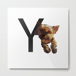 Y is for Yorkshire Terrier Dog Metal Print