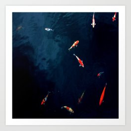 Koi Around Art Print