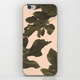 Botanical II - Day iPhone Skin