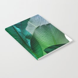 Palm leaf jungle Bali banana palm frond greens Notebook