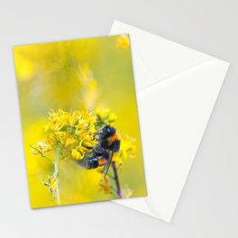 Bee Happy in Yellow Stationery Cards