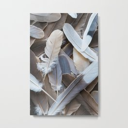 Feather Collection Metal Print