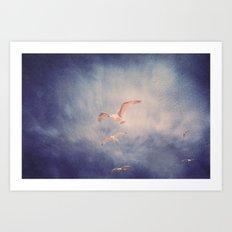 brighton seagulls 2 Art Print