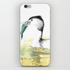 Haubentaucher iPhone Skin