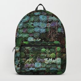 Field of Succulents Backpack
