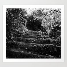 The Woodland Stair Art Print