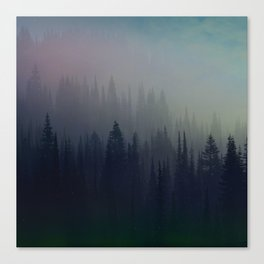 Boreal Forest Canvas Print