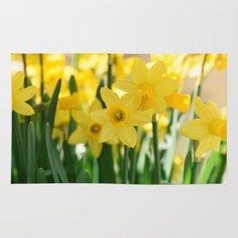 Spring Daffodils Rug