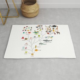 Evolution in biology, scheme evolution of animals on white. children's education back to scool Rug