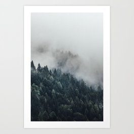 The mist moving into the forest. Art Print