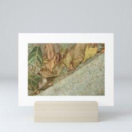 SOLO: Stepping Stone Mini Art Print