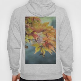 Yellow Acer Leaves Hoody
