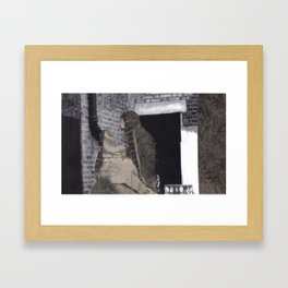 hidden2 Framed Art Print