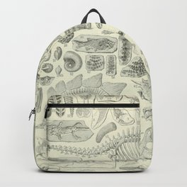 Fossil Chart Backpack