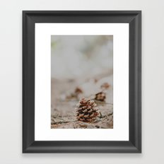 One pinecone Framed Art Print