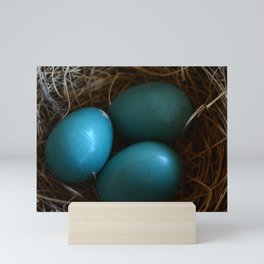 Robin's Egg Blue Mini Art Print