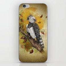 Harpy Eagle iPhone & iPod Skin