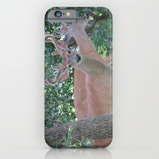 Up Close and Personal iPhone & iPod Case