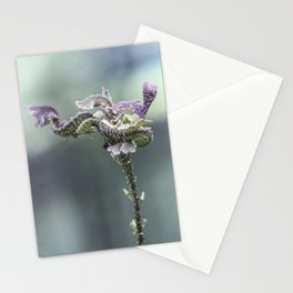 Paseo de flores Stationery Cards