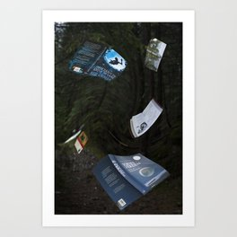 Books can fly Art Print
