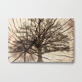 Tree shadow on wood Metal Print