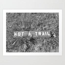 Not a Trail Art Print