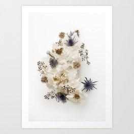 Dead flowers on coral Art Print