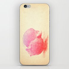 Pink Seashell iPhone & iPod Skin