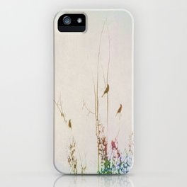 Rainbow of Melodies iPhone Case
