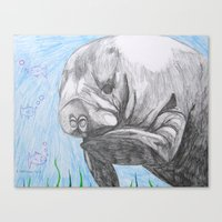 manatee Canvas Prints featuring Manatee by Caesarie