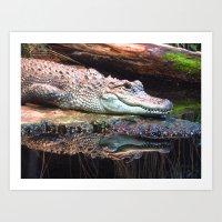 crocodile Art Prints featuring Crocodile by Carole Ballereau