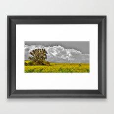Before the rainstorm - photography Framed Art Print