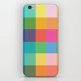 Picnic iPhone Skin