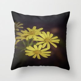 Yellow Wild Daisy  Throw Pillow