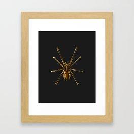 Golden Spider Framed Art Print