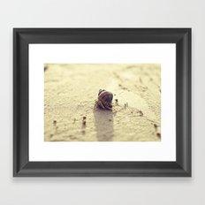 Little Hermit Framed Art Print