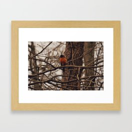 A Little Birdie Told Me Framed Art Print